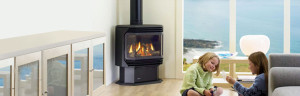 Regency FG38 Gas Log Fire at Hearth House Perth